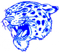 Lincoln Leopards