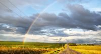 2019 #LiveLincolnCounty photo contest People's Choice winner, a rainbow over a blacktop road in Lincoln County, Kansas, by Allison Johnson