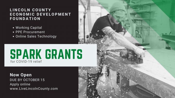 Lincoln County Economic Development Foundation SPARK grant online application